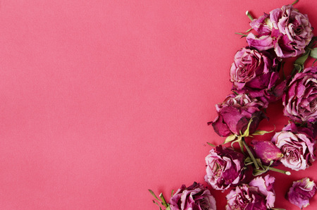 Flowers composition. Frame made of dried rose flowers. - Image Stock Photo