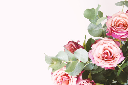 Blumenzusammensetzung. Rosenblüten und Zweig Eukalyptus auf weißem Hintergrund. Ansicht von oben, Kopienraum. - Bild