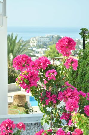 View of the sea coast and the city of Bodrum. - Image