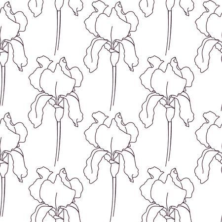 Seamless pattern drawn outline iris flower isolated on a white background. - vector illustration.