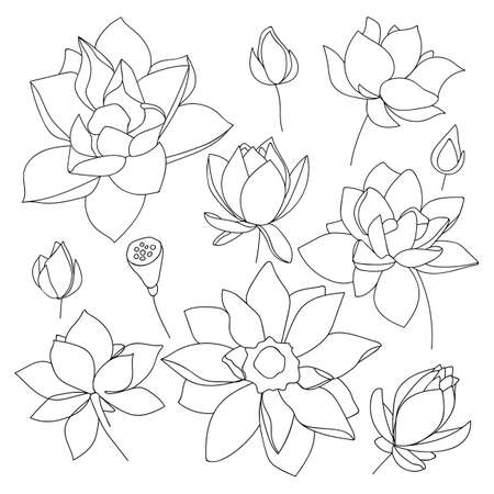 Set of lotus flowers. Sketch floral botany collection in outline black and white style. - Vector illustration Vettoriali