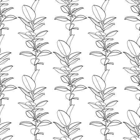 Ficus tropical seamless pattern. Line art drawing in black and white. - Vector illustration Illustration