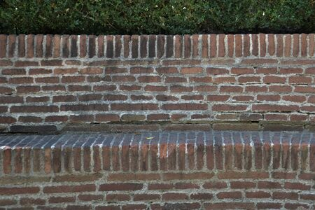 Brick wall with plant in medieval garden