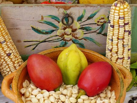 Fruits called Chamburo (native for South America), tree tomatoes, corn cobs and corn seeds in ceramic basket on display at food festival in Cuenca, Ecuador
