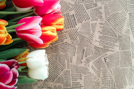 Tulips flowers bunch on Vintage newspaper background. Empty space for copy, text, lettering. Stock Photo