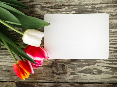 Tulips flowers bunch on dark barn wood planks background. Empty space for copy, text, lettering. Postcard, greeting card template.