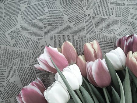 Tulips flowers bunch on Vintage newspaper background. Empty space for copy, text, lettering. 스톡 콘텐츠