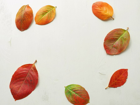 Autumn background. Old wooden table with red, yellow and green leaves. Copy space for your text.