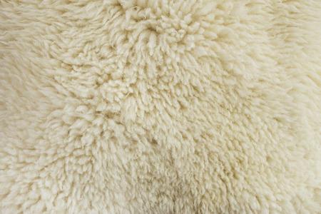 sheepskin: Textura de la piel vieja piel de oveja blanca Foto de archivo