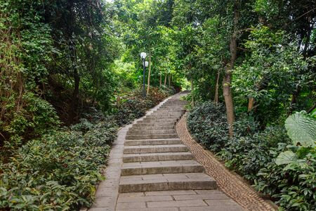 Stone stairs in a tropical park, Shenzhen, China Imagens