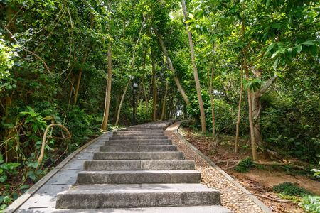 Stone steps in a city green park, Shenzhen, China Imagens