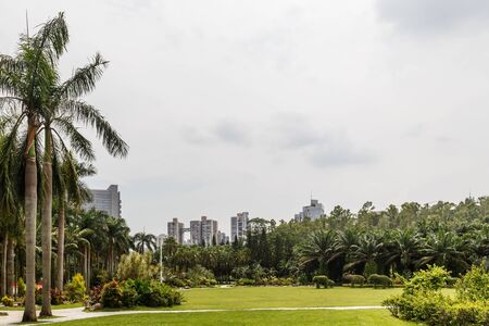 Scenic corner of the park in the center of the metropolis, Shenzhen, China, Asia