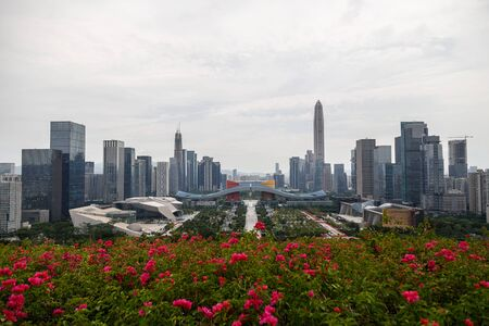 View of the metropolis from the hill, Shenzhen, China, Asia Imagens