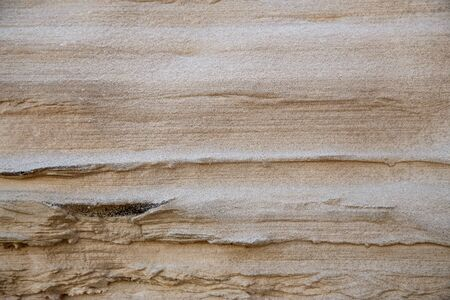 The texture of shale sandstone on the Baltic Sea. The shore is washed out by storms. Reklamní fotografie