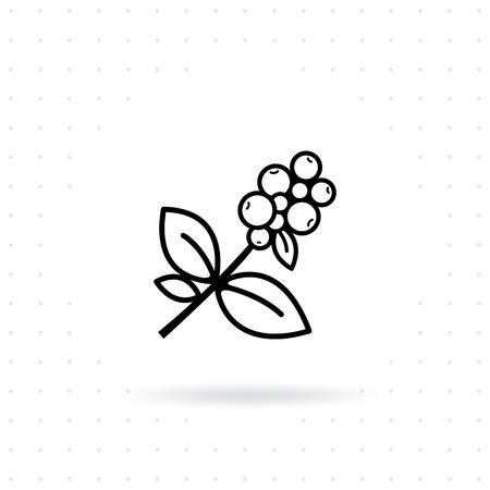 Kaffeepflanze-Symbol. Kaffeebaumast mit Beeren. Kaffeebohne mit Blatt auf weißem getrenntem Hintergrund. Zweig der Kaffeeikone in der Linie Artdesign. Vektor-illustration