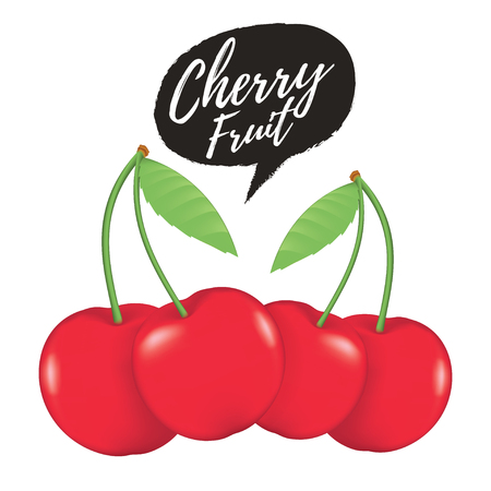 Cherry realistic fruit vector illustration. Ripe red cherry berries with leaves. Cherry vector illustration