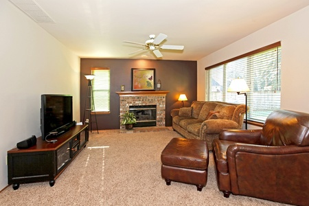 Living room with leather chair and fireplace Stock Photo - 12320836