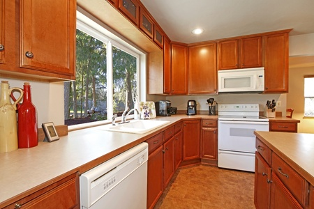 Kitchen with white appliances and forest view. Stock Photo - 12320808