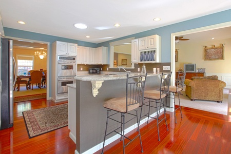 Kitchen with bar and living room Stock Photo - 12313859