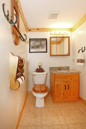 Cowboy bathroom with toilet and cabinet Stock Photo - 12312283