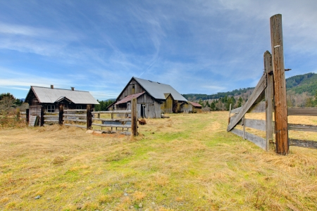 not painted: Build in 1907 old barn and shed in Ashford, near Mt.Ranier, Washington State