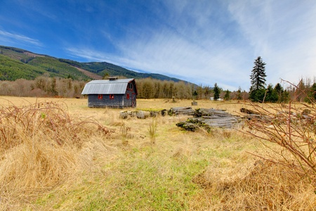 Build in 1907 old shed in Ashford, near Mt.Ranier, Washington State photo