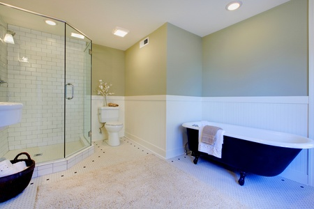 Luxury bathroom with iron tub and walk-in shower photo