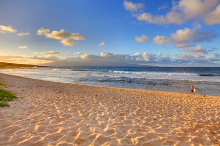 Tropical beach in Maui. Hawaii. Stock Photo - 12295455