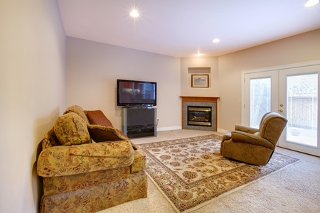 Living room with tv and fireplace. Stock Photo - 12311644