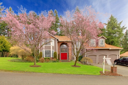 Cherry blossom and a large brown house. Stock Photo - 12310486