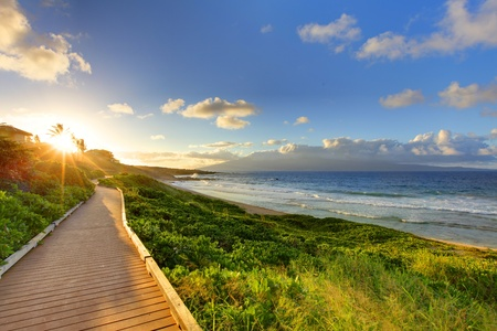 Oneloa Beach path near Ocean at sunset. Maui. Hawaii. photo