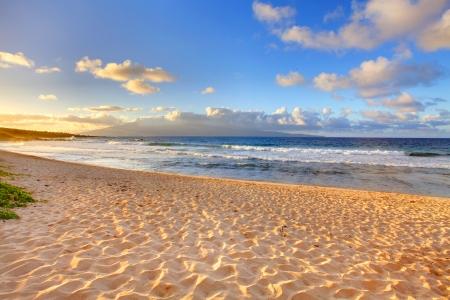 열대 섬 하와이에 황금 모래 해변