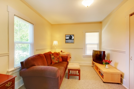 Simple small yellow room with red sofa and TV.