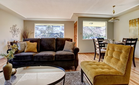 Living room inter with brown and yellow furniture. Stock Photo - 12760875