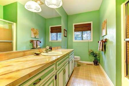 Green outdated bathroom interior design. photo