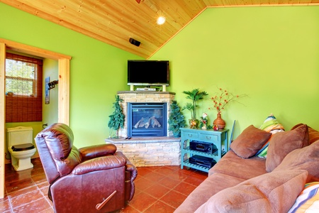Green living room with TV and fireplace and toilet. Separate small house near the pool. photo