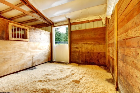 stable: Horse farm empty stable interior with wood walls.