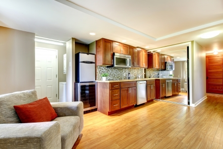 Basmenet luxury kitchen in the modern apartment with hardwood floors. Stock Photo - 13888981