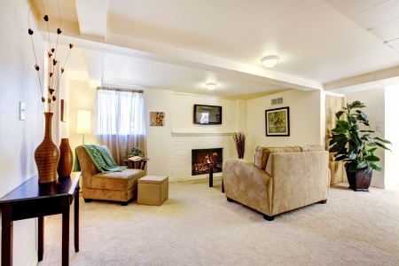 carpet texture: Bright large basemnt living room with fireplace and sofa.