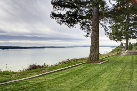 NorthWest water view of the Puget Sound with grass and pine tree.