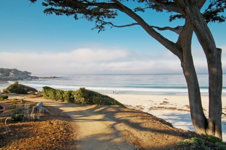 ca: Beautiful ocean white beach with trail and tree in Carmel, CA. Stock Photo