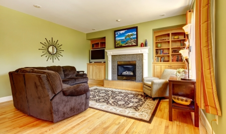 American house classic green room inter with fireplace. Stock Photo - 14615031