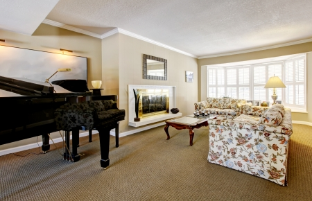 Elegant living room interior with piano, fireplace and anqique sofa. 免版税图像