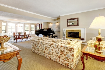 Elegant living room interior with piano, fireplace and anqique sofa. Stock Photo - 14615162