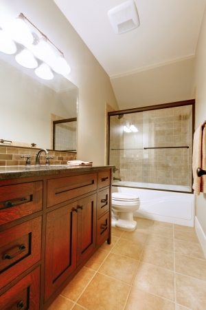 Nice bathroom with wood luxury cabinet and ceramic tile. Stock Photo - 14874092