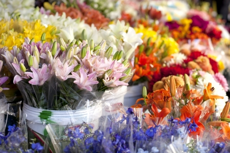 whitem: Day lilies flowersa t the outdoor market. Stock Photo
