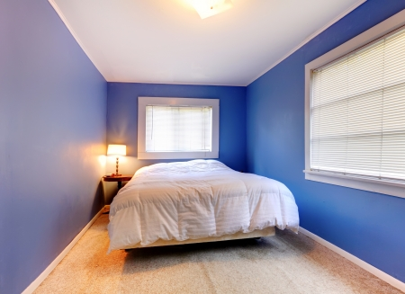 Blue purple bedroom with white blanket and two windows and beige carpet  Stock Photo - 15783837
