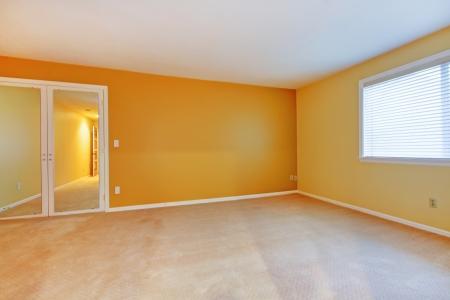 bedroom design: Empty room with yellow golden walls and mirror, beige carpet