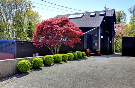 Dark black wood modern house with maple tree and gates. photo