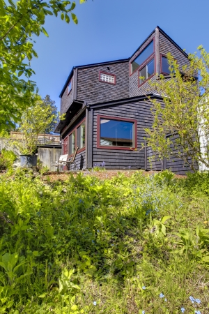 Black wooden modern house with spring backyard on the hill. photo